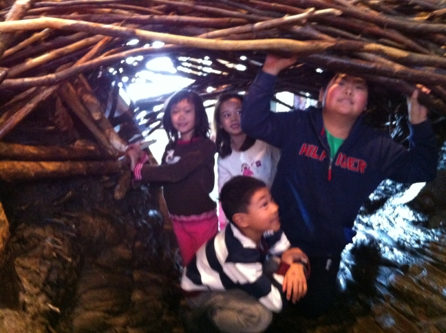 MOSC in a beaver dam