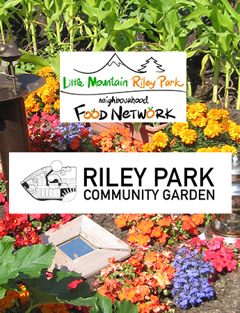 Little Mountain Riley Park Community Garden